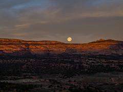 Sunrise Over Beef Basin (xjblue) Tags: moon sunrise landscape utah olympus memorialday e5 beefbasin jaredpayne xjblue
