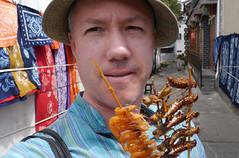 Street snacks, Dali (Niall Corbet) Tags: china food dragonfly shrimp snack grasshopper locust yunnan dali streetfood