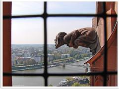 Frankfurt am Main Dom - Wasserspeier (gargoyle)