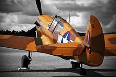 Lee's hope.. (mickb6265) Tags: duxford fightercollection vhpiv 4119841 flyinglegendsshow leeshope curtisp40fkittyhawk