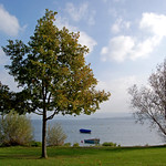 Radolfzell - Blick auf den Bodensee thumbnail