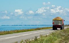 Driving patatoes along the Markermeer (Ferdi's - World) Tags: bridge nederland flevoland almere markermeer oostvaarderplassen nikongp1 nikkond7100nikkorafs80400mm14556ed nikond71000 metsjoerd