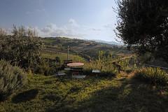 Montecarotto (selfeld) Tags: italy marche montecarotto