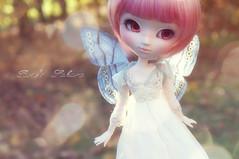 my soft Sakura (Rose*aime*OH!) Tags: light love beauty pullip pullipdoll pullipfc