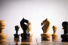 El enfrentamiento (Omar LT) Tags: wood army caballos madera handmade chess battle artesana ajedrez versus schach enfrentamiento