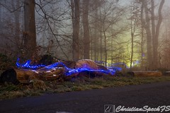 Blue ant trails (christian speck) Tags: trees light lightpainting fog night forest 35mm outdoors schweiz switzerland suisse sony arbres lumiere nuit foret sauvabelin rx1 brouyard
