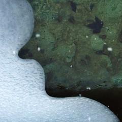 Closed mouth (enki22) Tags: winter abstract art nature water canon natura monet minimalism conceptual 6d enki22