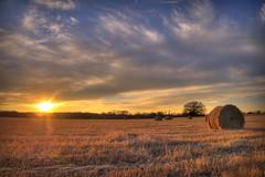 P1100183_4_5_tonemapped (rrunnertexas) Tags: sunset field lumix texas panasonic hay bale hdr haybales haybail tonemapped lx5
