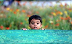 """Never lose a holy curiosity"" - Albert Einstein (...Sathiya) Tags: pink blue boy red orange brown black never flower green colors look yellow wall garden see kid eyes hands lose mysore curiosity learn brindavan"
