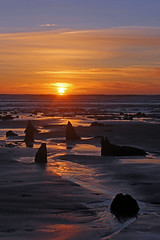 A Walk in the Woods! (John Ibbotson (catching up!)) Tags: wood sunset sea beach wales forest coast seaside sand day cloudy submerged prehistoric ceredigion borth petrified