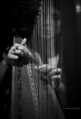 Show Landisles (Michael Delatte [MKL]) Tags: show new blackandwhite canada rock keyboard noiretblanc quebec drum montreal band wave pop harp electronic groupe musique guitare spectacle harpe electronique landisles