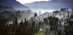 s Jan25 2015 Bromo Mist Merge 01 (Andrew JK Tan) Tags: travel indonesia bromo 2015