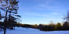 Snow Field (Harry Lipson) Tags: panorama white snow nature field landscape snowy snowfield fairway treeline harrylipsoniii harrylipson harryshotscom thephotographyofharrylipson