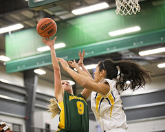 A77V7113 (Don Voaklander) Tags: woman man male men college sports basketball sport female community women university edmonton bears varsity alberta pandas golden centre university mens voaklander saville donvoaklander