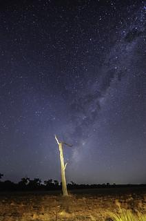 Milky Way over Keysbrook Farm, Western Australia