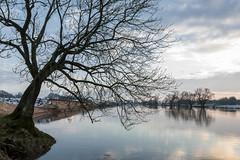 Emsland - Winter_IMG_6146 (milanpaul) Tags: schnee winter germany landscape deutschland sonnenuntergang fluss landschaft ems baum januar emsland niedersachsen 2015 meppen canoneos5d tamron2470mmf28divcusd nsgmeppen