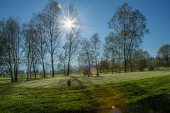 Golfplatz Kiesen #golfaarental (fidel133) Tags: love nature golf switzerland nikon swiss baum golfplatz berneroberland nikond7200 aarental davidbrgger inlovewithswitzerland golfaarental