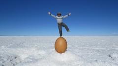 - 2016-05-06 at 21-37-30 + balancing on an egg