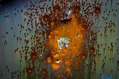 Bullet Art (sstandeford) Tags: lake nature rust texas pentax 28mm trail trinity shotgun lavon f20
