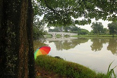 Lake Side (yadhavan.c) Tags: bridge lake green nature umbrella canon river garden rainbow scenery singapore calm lakeside chinesegarden naturescene ckphotography yadhavancphotography