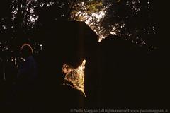 120603-25-Caprione-Liguria-Laspezia-21-Giugno-Farfalla-di-Luce-dorata-Solstizio-d-estate-light-golden-butterfly-summer-solstice-june.jpg (Paolo_Maggiani) Tags: 2003 calzolari caprione laspezia montemarcello farfalla farfalladiluce megalite