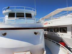Boats on the Water (shaire productions) Tags: egypt egyptian travel image picture photo photograph view world hurghada sailing redsea travelphotography sea ocean marine boat boats vacation scuba diving yacht ship floating leisure relax relaxation traveling