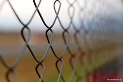 tras el alambrado (Ricardo Obando) Tags: canon 50mm reja alambrado acero alambre