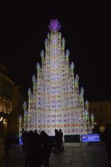 Piazza Castello: Albero di Natale in una notte di fine d'anno (costagar51) Tags: torino piemonte italia italy arte anticando colourartaward
