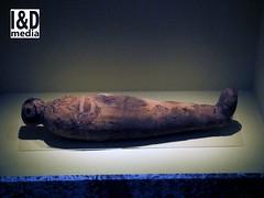 mcat9 (Internet & Digital) Tags: cats ancient god hawk victorian egypt ibis horus ritual mummy isis sacrifice osirus ancientegypt offerings mummified thoth mummifiedcats