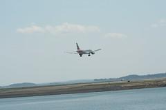 IMG_2579 (wmcgauran) Tags: boston airplane airport aircraft aviation american airbus bos eastboston a319 kbos n712us
