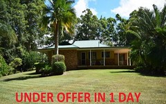 66 Irvines Road, Newee Creek NSW