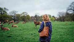 Gem and the deers (Richard James Wiggins) Tags: temp nottingham walking weekend deers wollaton deerpark countryhouse wollatonhall