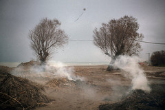 IMG_8483-3c (dirtyharrry) Tags: color colour tree 35mm canon landscape smoke dirty pinhole creta crete dirtyharry 5dmkii dirtyharrry