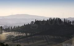 20160704_crete_senesi_siena_tuscany_88h77 (isogood) Tags: italy landscapes horizon country scenic tuscany crete siena cretesenesi asciano senesi