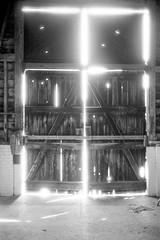 Bursting with light (tercrossman87) Tags: film home kodak olympus epson 100 35 development rd v550 xtol foma fomapan kodakxtol film:iso=100 fomafomapan100 developer:brand=kodak film:brand=foma developer:name=kodakxtol film:name=fomafomapan100 filmdev:recipe=10821