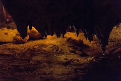(JacquelineEliza) Tags: floridacavernsstatepark florida caverns statepark stalactites stalactite stalagmite stalagmites neon springs spring naturalspring woods banyantrees trees nature landscape marianna canon canon60d