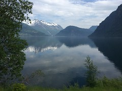 Eagle Road, Herdal Mtn Farm, Norway (50) (janetfo747 ~ Thank You for the Views and Comments) Tags: norway farm mtn fjord geiranger serine herdal eagleroad