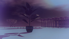 Fake Plastic Trees: Radiohead Redux (Peep.Sideshow) Tags: secondlife radiohead furillen secondlifeplaces