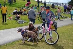 Soltice Parade 06-2016-252 (bananafrog1) Tags: seattle washington fremont gasworkspark nudebicylists fremontparade062016 nudeislewd solticeparade062016