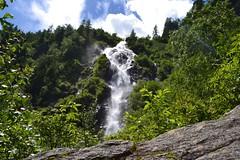 Steirischer Bodensee 21.6.2016 (Fotoblog Naturhotel Hflehner) Tags: steirischerbodensee seewigtal petersberg hhenweg natur bergsee ausflugsziel schladming dachstein