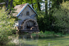 Mill on the river (Dino Barsic) Tags: old light plants tree green mill nature forest river day outdoor croatia hidden watermill karlovac mreznica canon600d