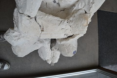 Expo Jury. ESA Saint-Luc 2016. zeroanodino (http://zeroanodino.blogspot.de/) Tags: wood sculpture art madera arte plaster escultura liege zero metalsculpture lige escayola lieja woodsculpture saintluc platre anodino zeroanodino plastersculpter