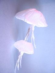Jellyfish - Michael Assis (Rui.Roda) Tags: origami papiroflexia papierfalten medusa guaviva mduse alforreca jellyfish michael assis