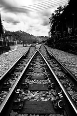 Find your own path (L.Rico) Tags: shifen taiwan path station taipei city forest train railway rail steel travel traveler street asua asia ways light rock shifenstation taipeicity newtaipeicity traditional atmosphere tough tree two blackandwhite blw baw black white