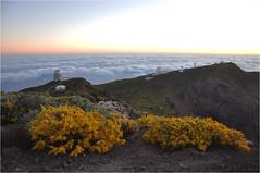 Sunrise at the Roque de Los Muchachos | 6 (elena_n) Tags: mountains sunrise lapalma