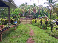 Home Entrance in Provincial Philippines (ToGa Wanderings) Tags: life family house mountain green home beautiful rural island living countryside gate asia path philippines entrance away tropical simple province basic humble mindanao secluded developing occidental misamis oroquietacity misimisoccidental