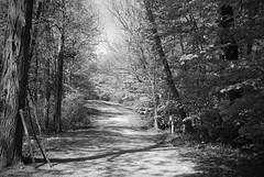 The First Step (harrytakesphotos) Tags: bw path countryroad
