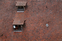 Schutz (gert55) Tags: windows roof germany deutschland details dach rothenburg