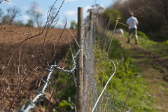 The Wibbly-Wobbly Fence (Shastajak) Tags: fence pentax friday hff istdl2 pentaxistdl2 tamron18250mm