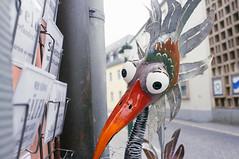 Komischer Vogel (qnz